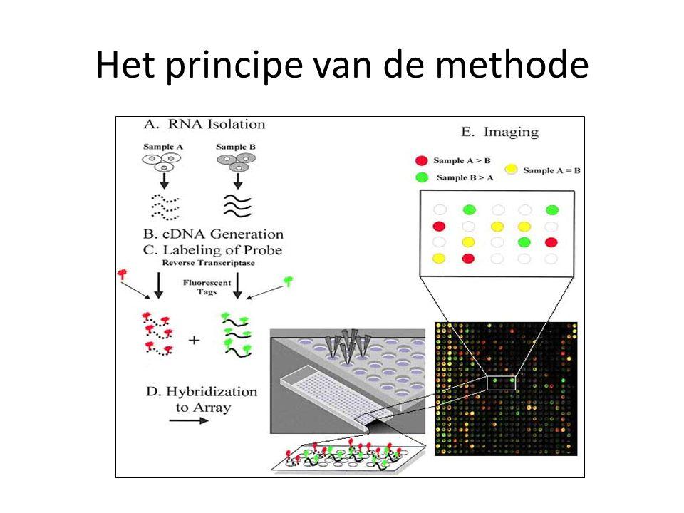 Het principe van de methode
