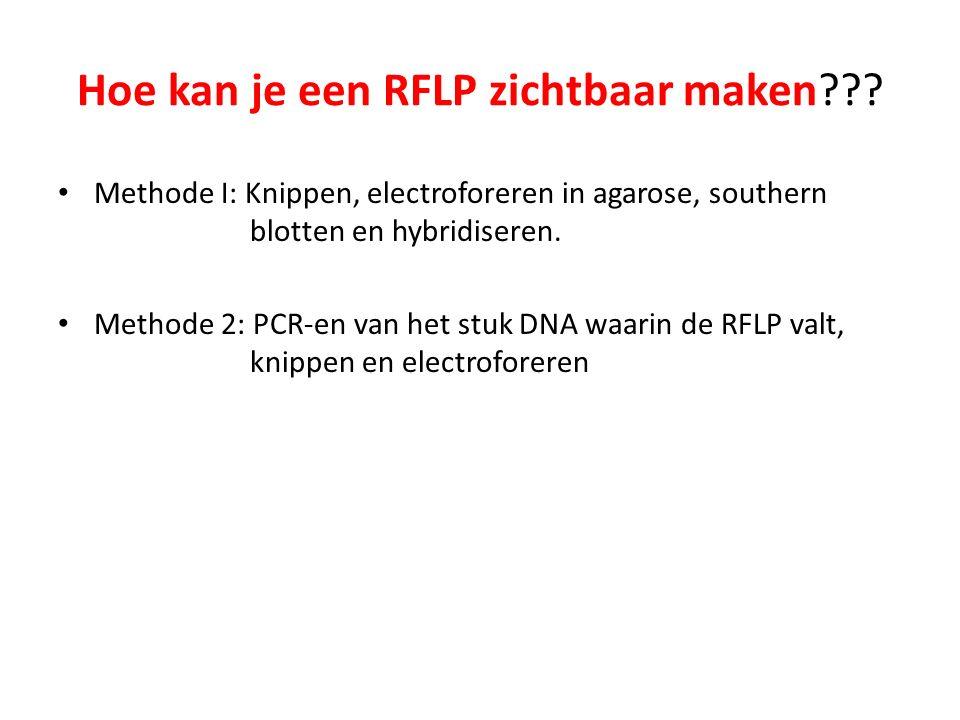 Hoe kan je een RFLP zichtbaar maken??.
