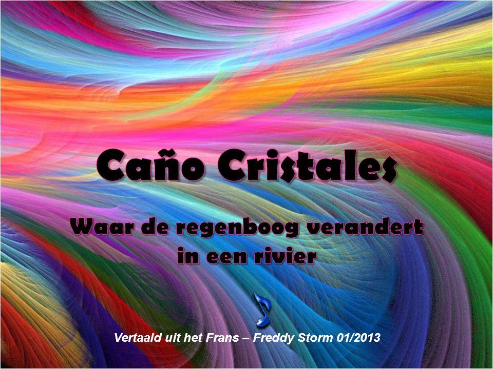 (REFLEXIONES) Vertaald uit het Frans – Freddy Storm 01/2013