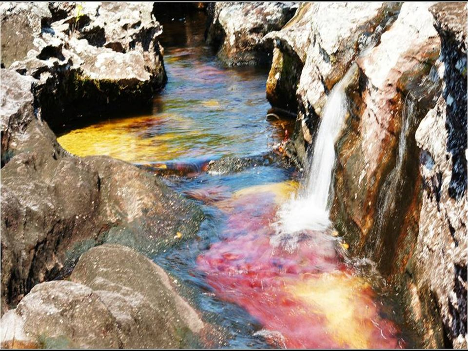 De rotsen waarover de rivier stroomt doen kleine cirkelvormige kanalen ontstaan, kippennesten genoemd.
