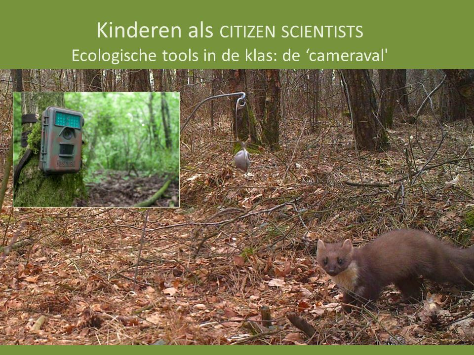 Kinderen als CITIZEN SCIENTISTS Ecologische tools in de klas: de 'cameraval