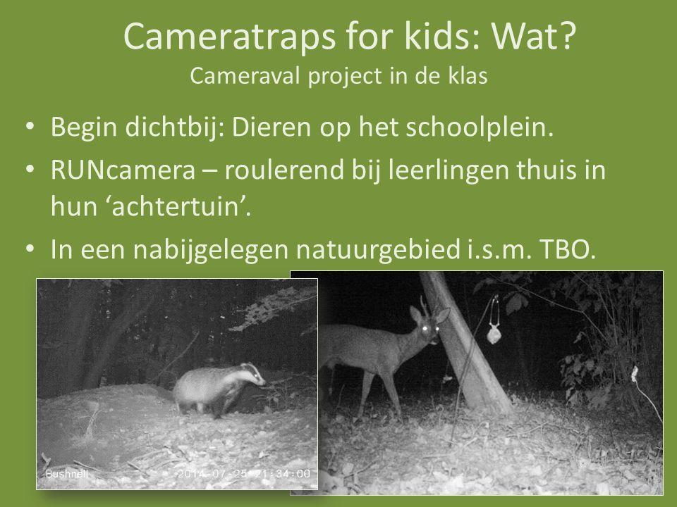 Cameraval project in de klas Begin dichtbij: Dieren op het schoolplein.