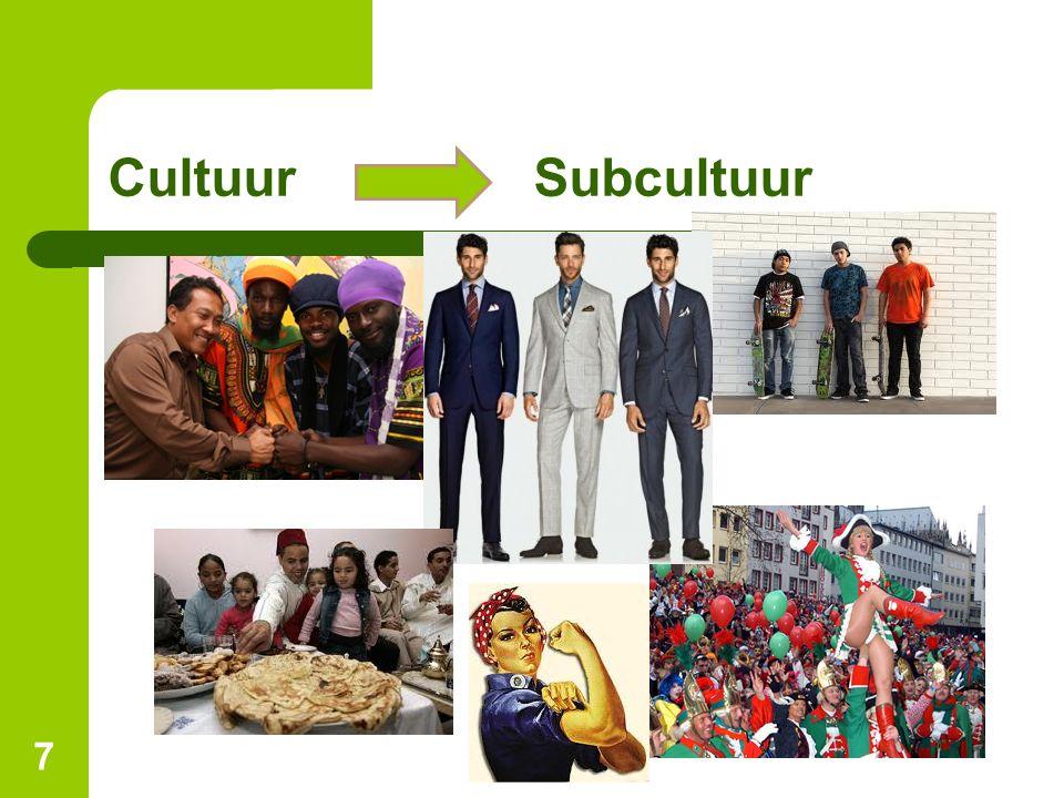 CultuurSubcultuur 7