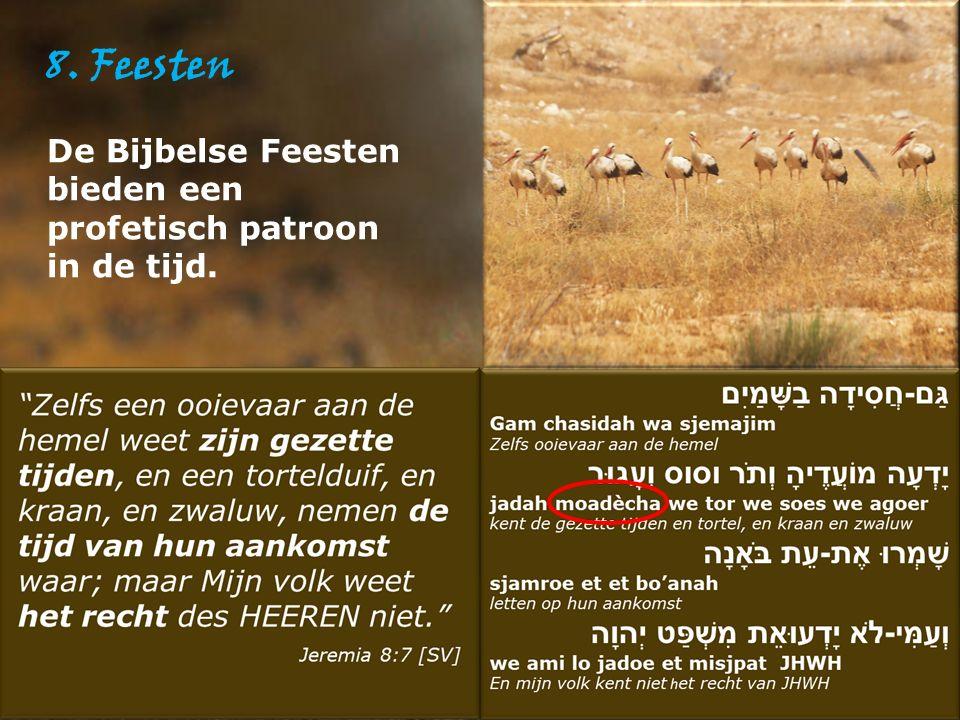 8. Feesten De Bijbelse Feesten bieden een profetisch patroon in de tijd.