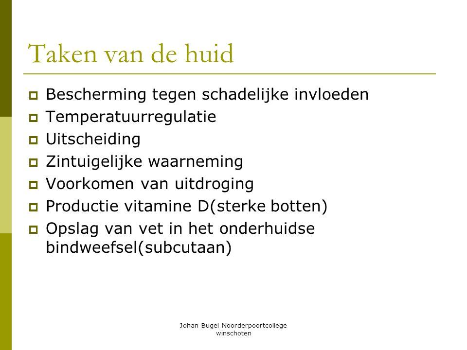 Johan Bugel Noorderpoortcollege winschoten Taken van de huid BBescherming tegen schadelijke invloeden TTemperatuurregulatie UUitscheiding ZZin