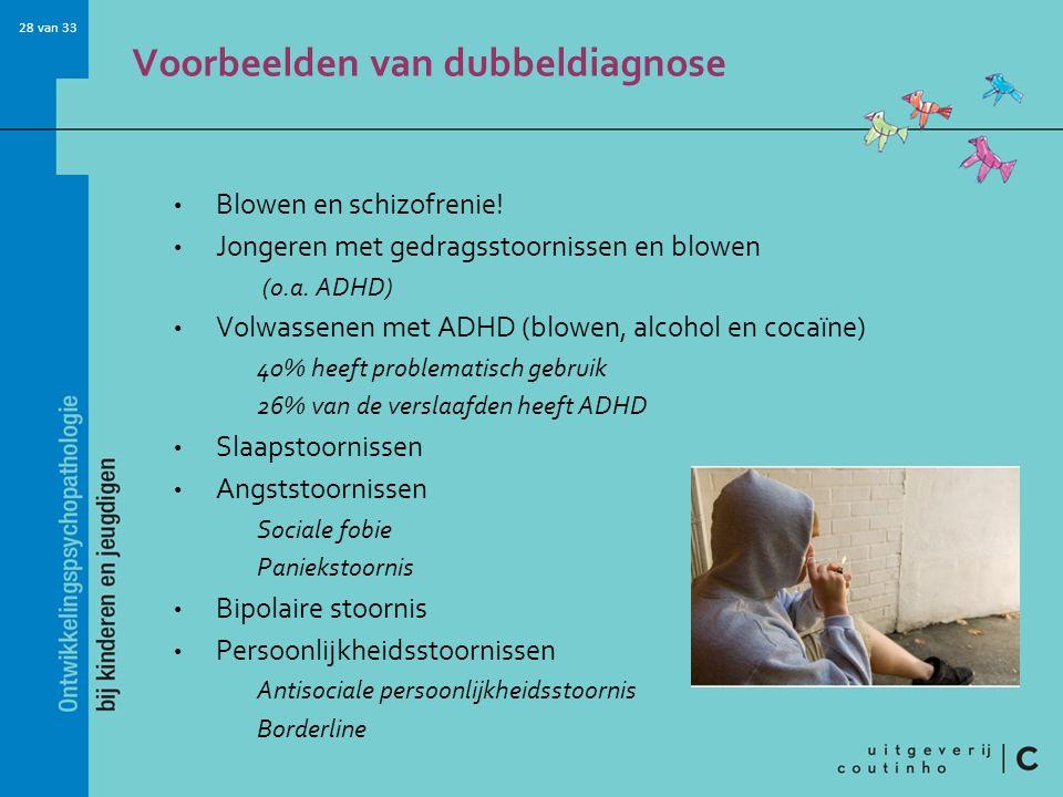 28 van 33 Voorbeelden van dubbeldiagnose Blowen en schizofrenie.