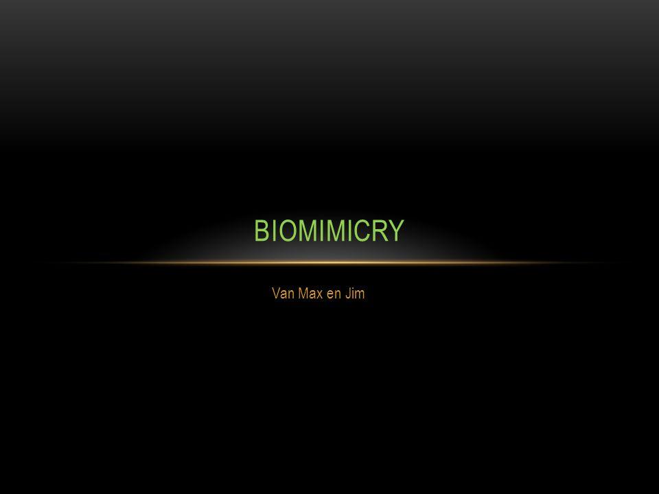 Biomimicry is als je een probleem hebt dat je dat dan oplost door de natuur.