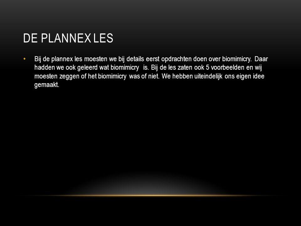 DE PLANNEX LES Bij de plannex les moesten we bij details eerst opdrachten doen over biomimicry. Daar hadden we ook geleerd wat biomimicry is. Bij de l