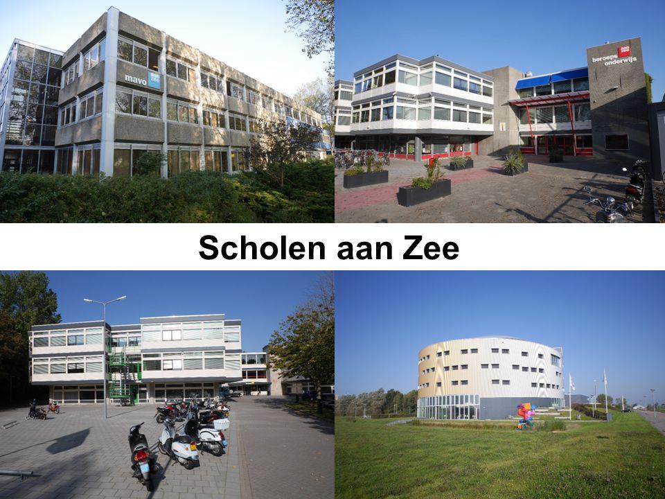 Scholen aan Zee