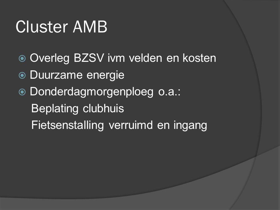 Cluster AMB  Overleg BZSV ivm velden en kosten  Duurzame energie  Donderdagmorgenploeg o.a.: Beplating clubhuis Fietsenstalling verruimd en ingang