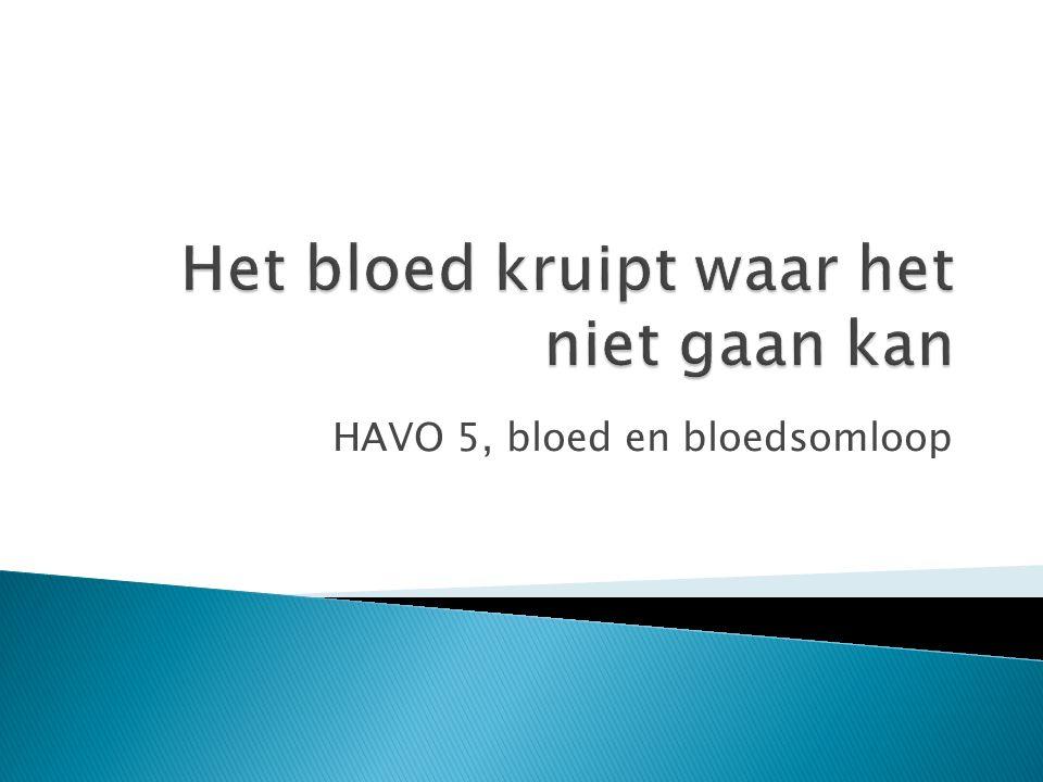 HAVO 5, bloed en bloedsomloop