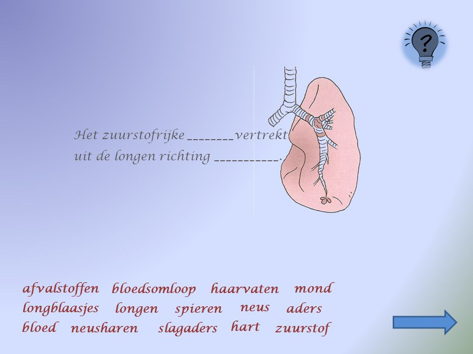 Ons lichaam heeft zuurstof nodig. Die zuurstof komt ons lichaam binnen via de mond of de neus.