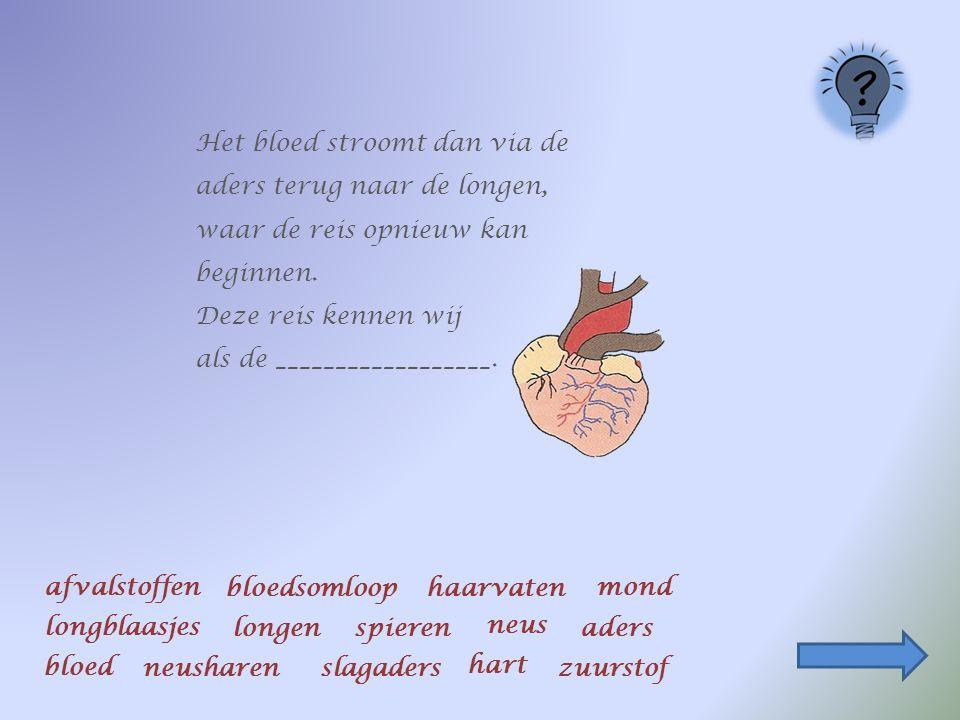 Het bloed stroomt dan via de ________terug naar de longen, waar de reis opnieuw kan beginnen.