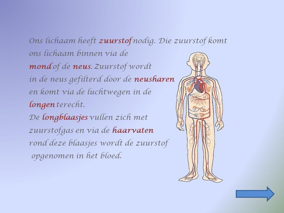 Ons lichaam heeft zuurstof nodig.Die zuurstof komt ons lichaam binnen via de mond of de neus.