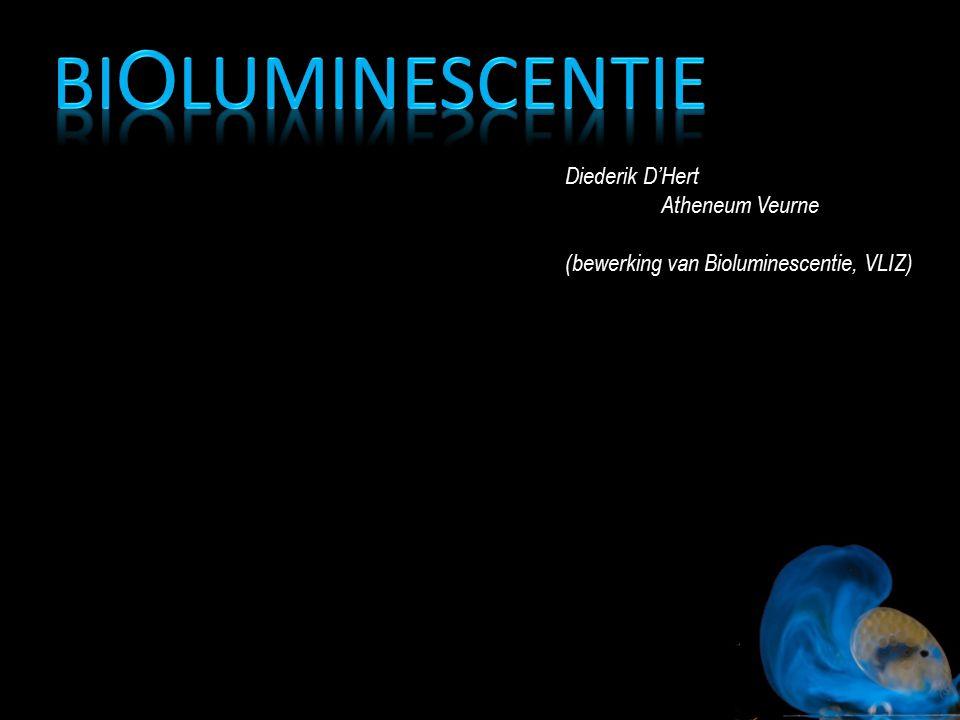Diederik D'Hert Atheneum Veurne (bewerking van Bioluminescentie, VLIZ)