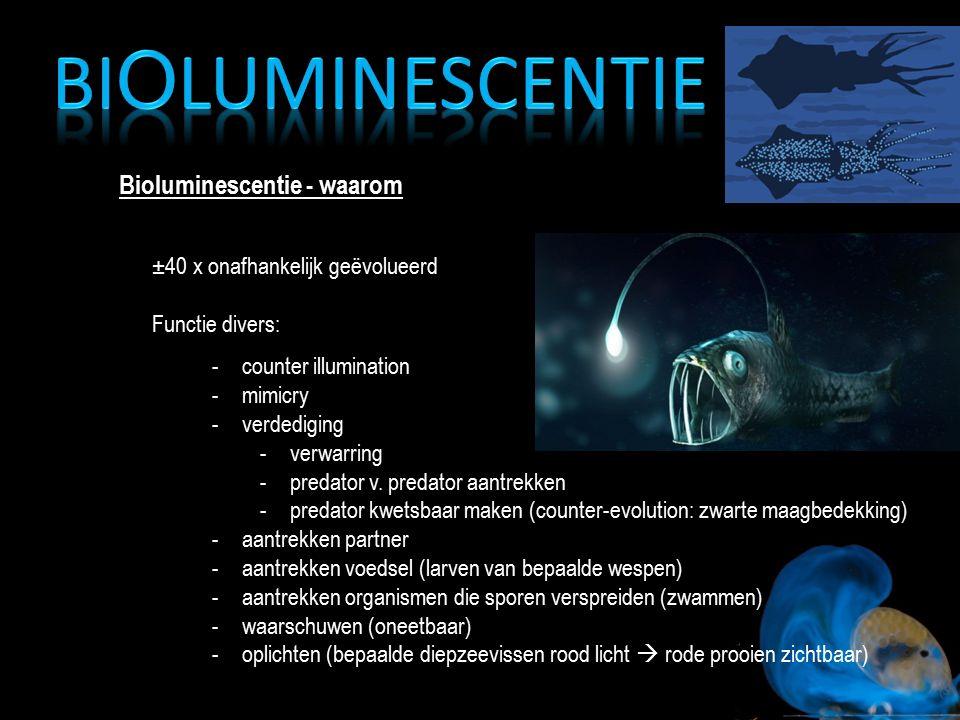 Bioluminescentie - waarom ±40 x onafhankelijk geëvolueerd Functie divers: -counter illumination -mimicry -verdediging -verwarring -predator v. predato