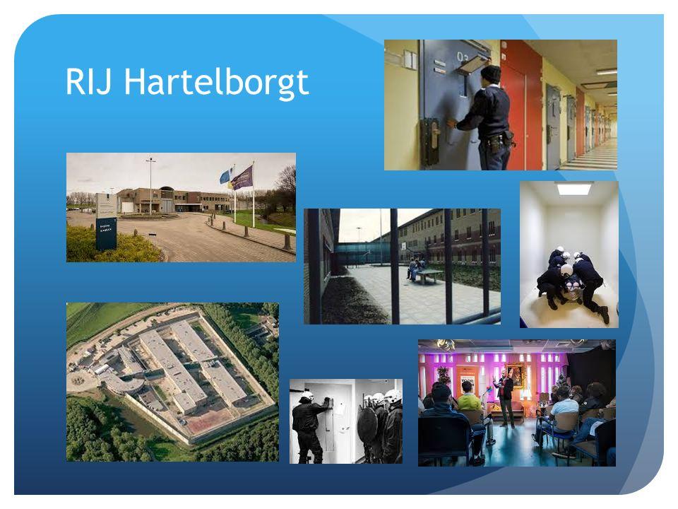 RIJ Hartelborgt