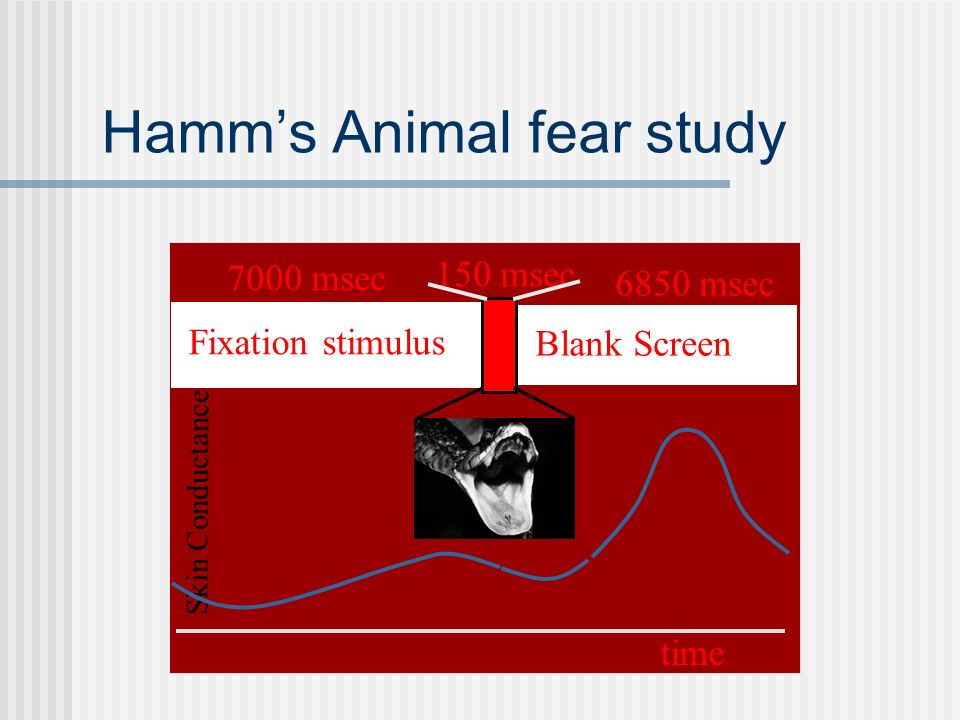 Hamm's Animal fear study Skin Conductance Fixation stimulus 7000 msec time 6850 msec Blank Screen 150 msec