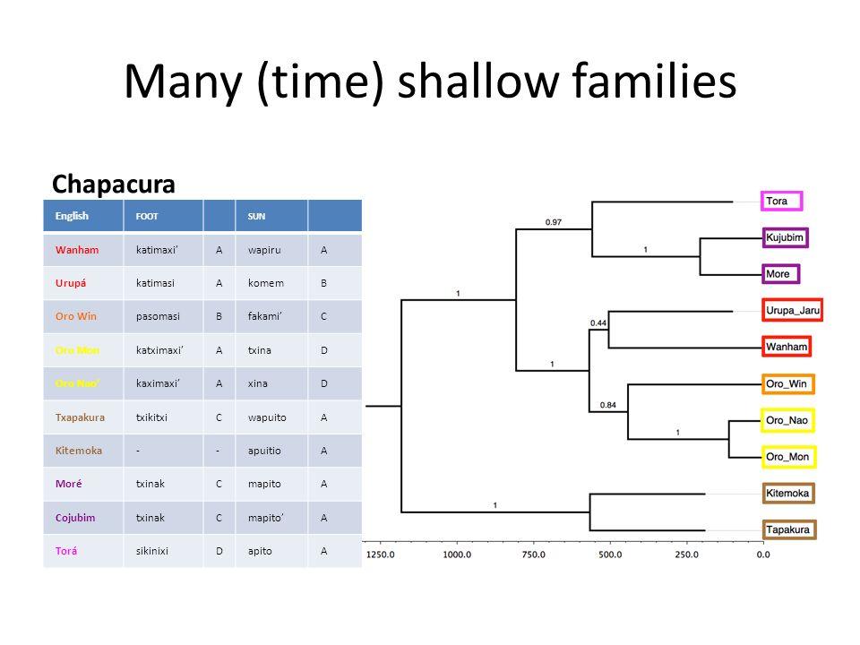 Many (time) shallow families Chapacura English FOOTSUN Wanhamkatimaxi'AwapiruA UrupákatimasiAkomemB Oro WinpasomasiBfakami'C Oro Monkatximaxi'AtxinaD