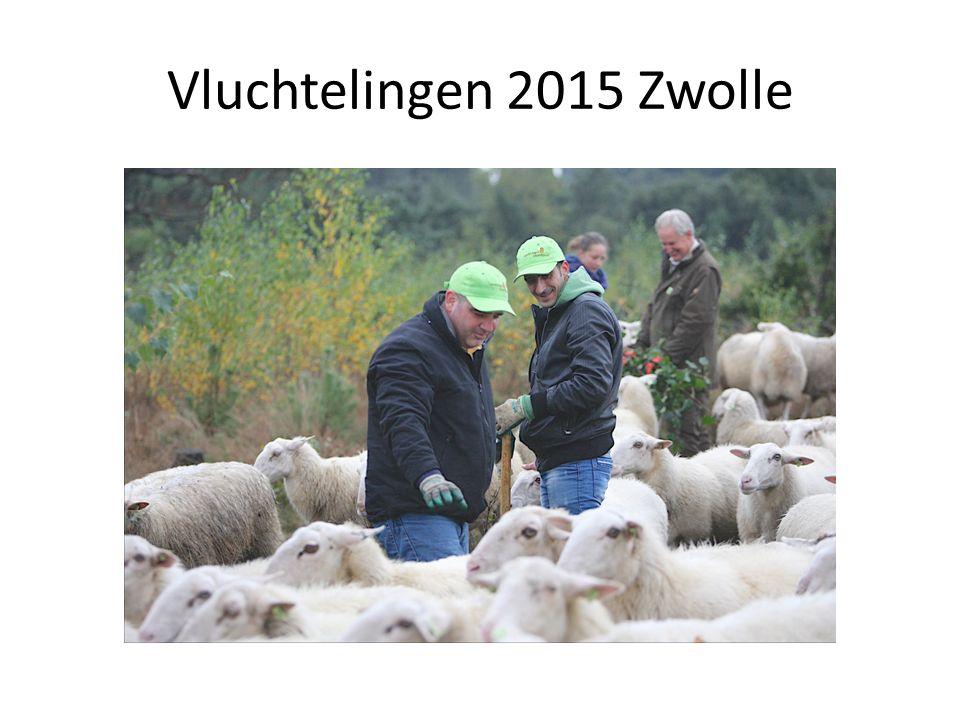 Vluchtelingen 2015 Zwolle