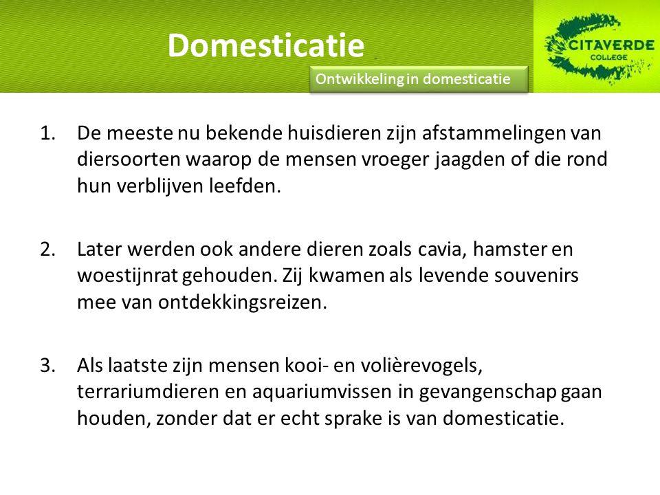 Domesticatie ging het gemakkelijkst bij dieren die in kuddeverband leefden of een roedelinstinct hebben.