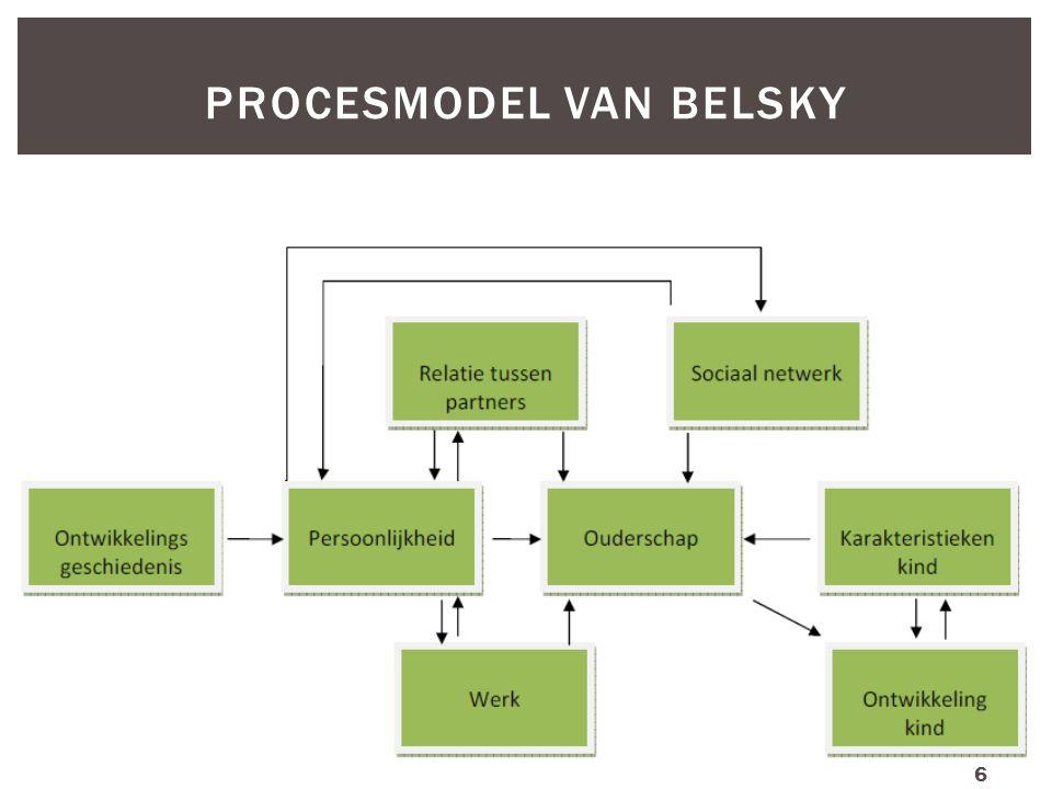 PROCESMODEL VAN BELSKY 6