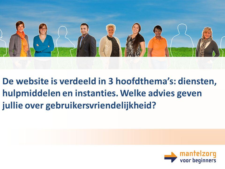 De website is verdeeld in 3 hoofdthema's: diensten, hulpmiddelen en instanties.
