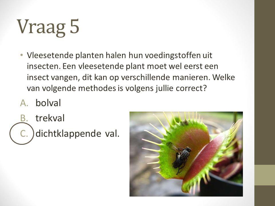Vraag 5 Vleesetende planten halen hun voedingstoffen uit insecten. Een vleesetende plant moet wel eerst een insect vangen, dit kan op verschillende ma