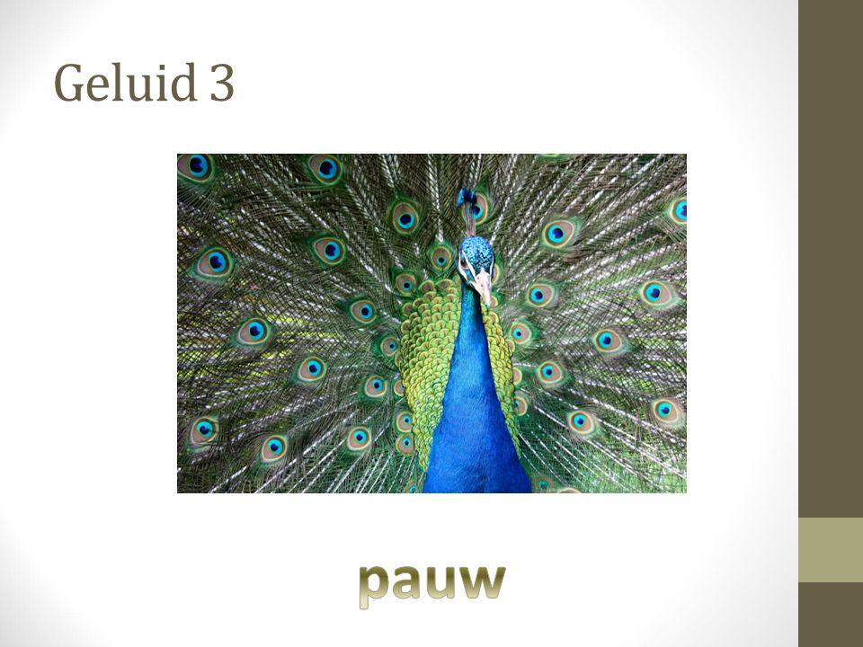 Geluid 3