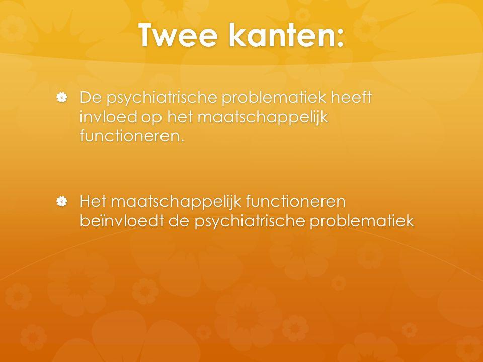 Twee kanten:  De psychiatrische problematiek heeft invloed op het maatschappelijk functioneren.  Het maatschappelijk functioneren beïnvloedt de psyc