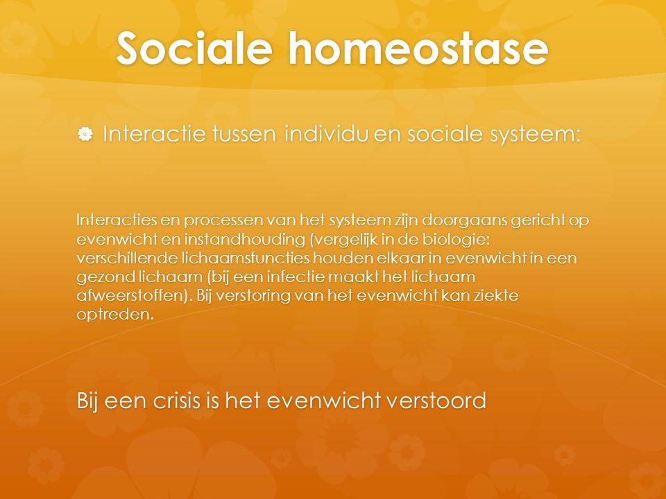 Sociale homeostase  Interactie tussen individu en sociale systeem: Interacties en processen van het systeem zijn doorgaans gericht op evenwicht en in