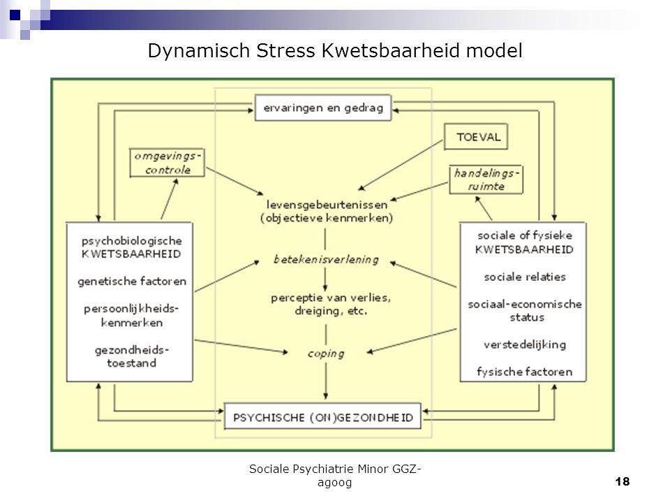Sociale Psychiatrie Minor GGZ- agoog18 Dynamisch Stress Kwetsbaarheid model
