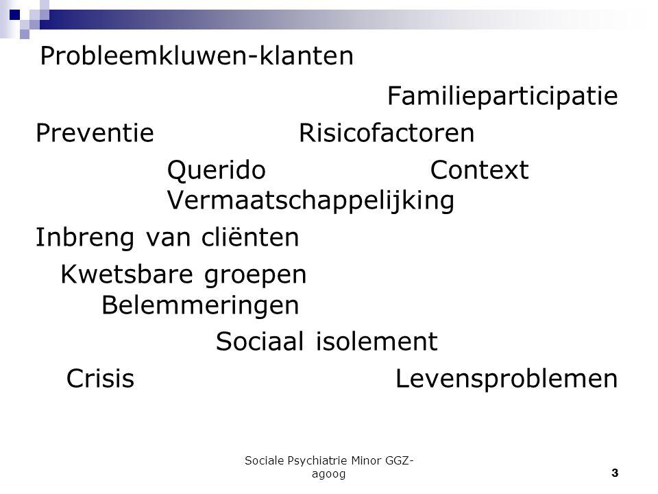Sociale Psychiatrie Minor GGZ- agoog3 Probleemkluwen-klanten Familieparticipatie PreventieRisicofactoren QueridoContext Vermaatschappelijking Inbreng
