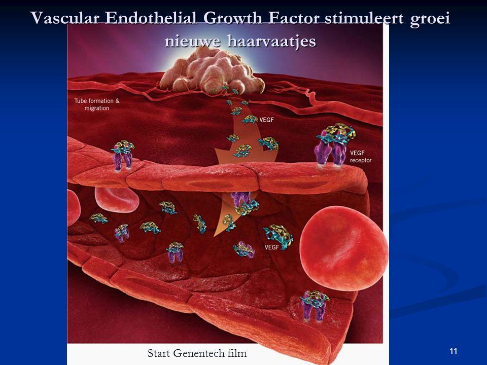 11 Vascular Endothelial Growth Factor stimuleert groei nieuwe haarvaatjes Start Genentech film