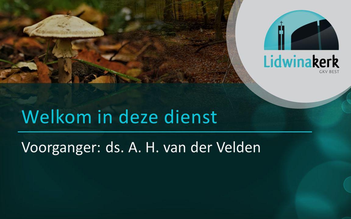 Voorganger: ds. A. H. van der Velden Welkom in deze dienst