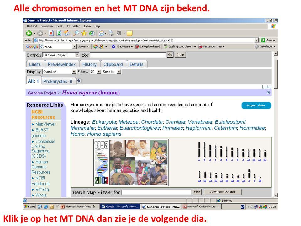 Alle chromosomen en het MT DNA zijn bekend. Klik je op het MT DNA dan zie je de volgende dia.