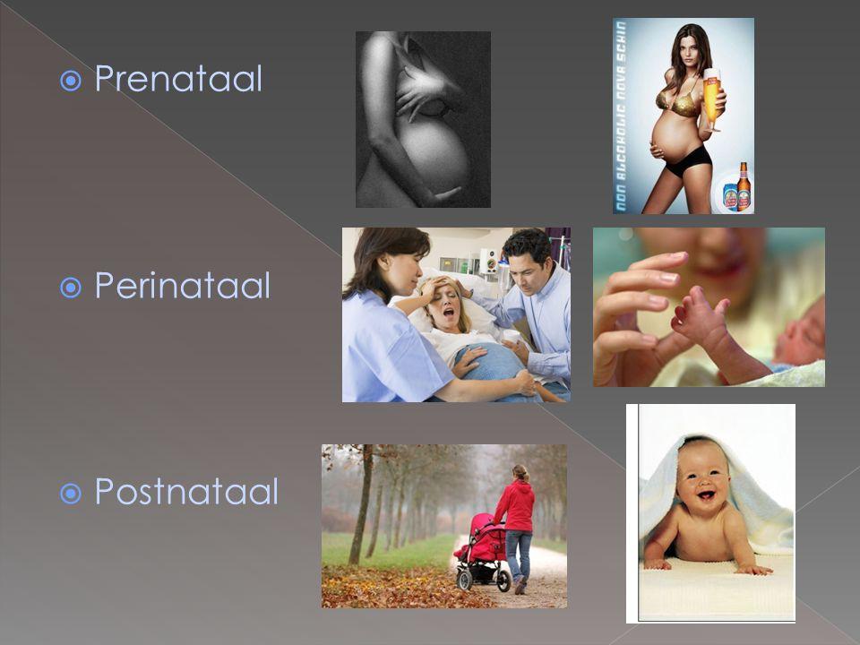  Prenataal  Perinataal  Postnataal