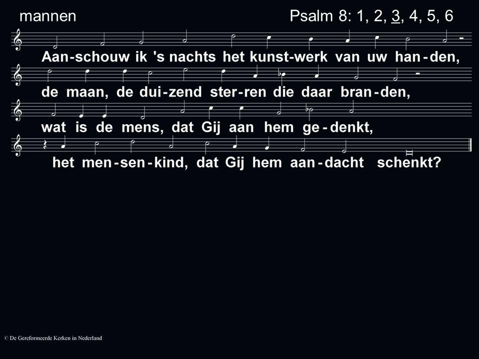 Psalm 8: 1, 2, 3, 4, 5, 6 mannen