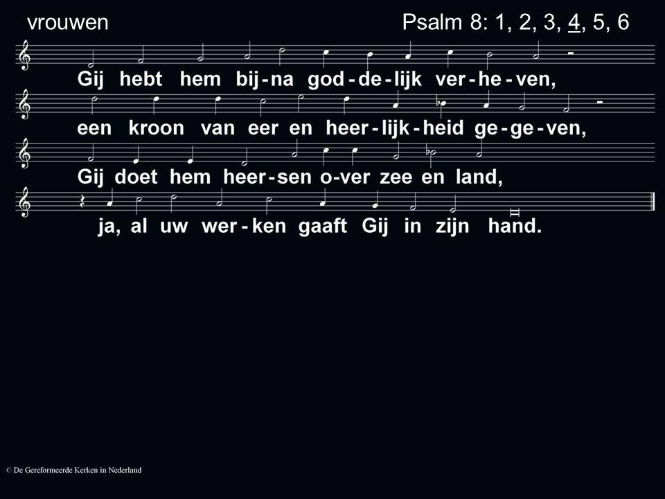 Psalm 8: 1, 2, 3, 4, 5, 6 vrouwen