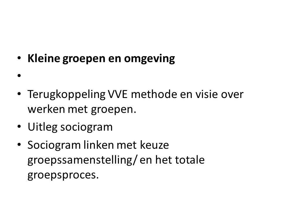 Kleine groepen en omgeving Terugkoppeling VVE methode en visie over werken met groepen.