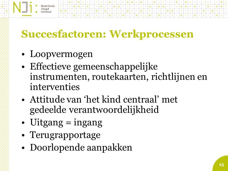 13 Succesfactoren: Werkprocessen Loopvermogen Effectieve gemeenschappelijke instrumenten, routekaarten, richtlijnen en interventies Attitude van 'het
