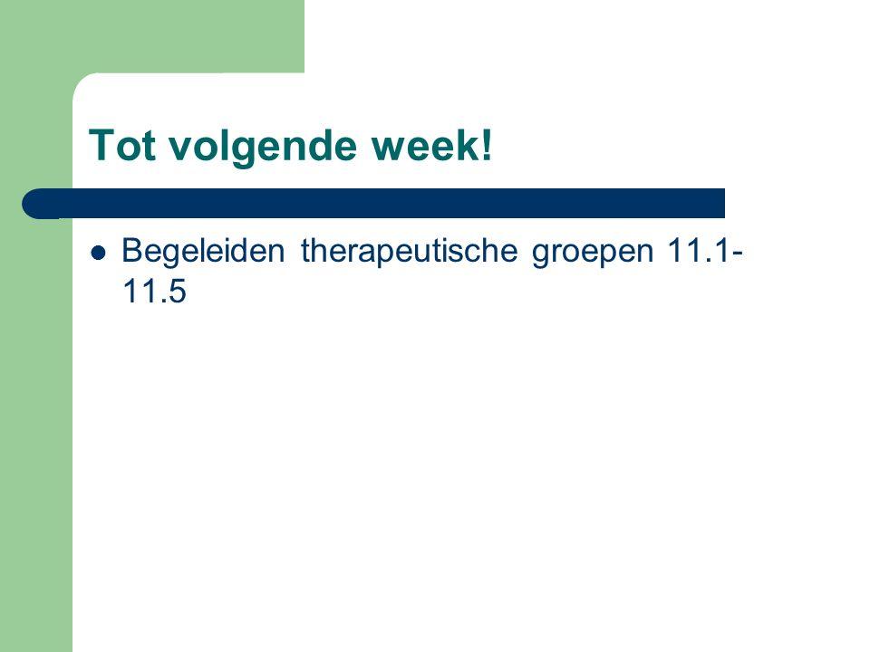 Tot volgende week! Begeleiden therapeutische groepen 11.1- 11.5