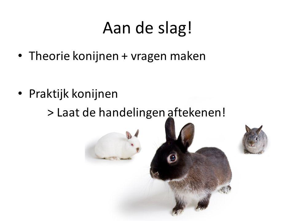 Aan de slag! Theorie konijnen + vragen maken Praktijk konijnen > Laat de handelingen aftekenen!