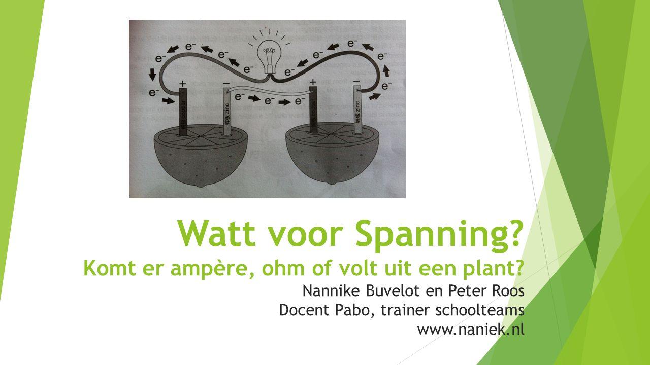 Watt voor Spanning? Komt er ampère, ohm of volt uit een plant? Nannike Buvelot en Peter Roos Docent Pabo, trainer schoolteams www.naniek.nl