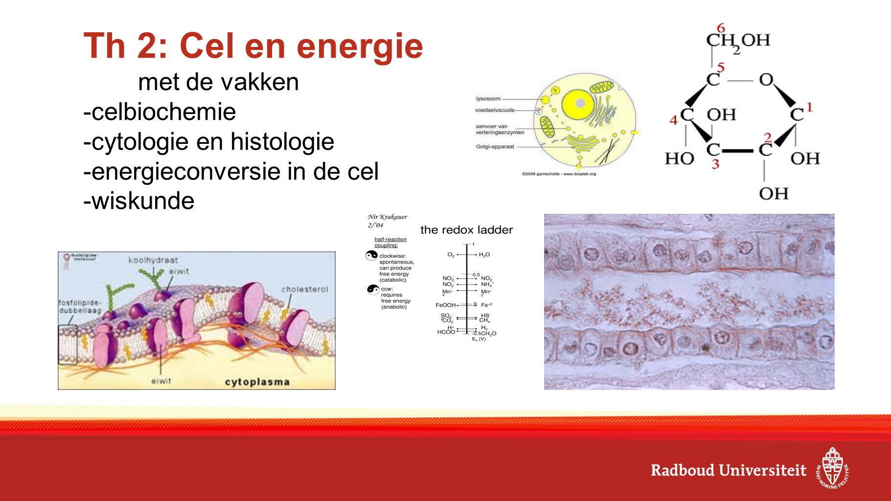 Th 2: Cel en energie met de vakken -celbiochemie -cytologie en histologie -energieconversie in de cel -wiskunde
