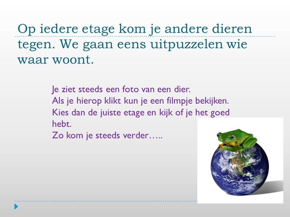 Kroonlaag Lage bomen Struiklaag Bodemlaag Jaguar Klik voor een filmpje op de foto Kies het goede antwoord.