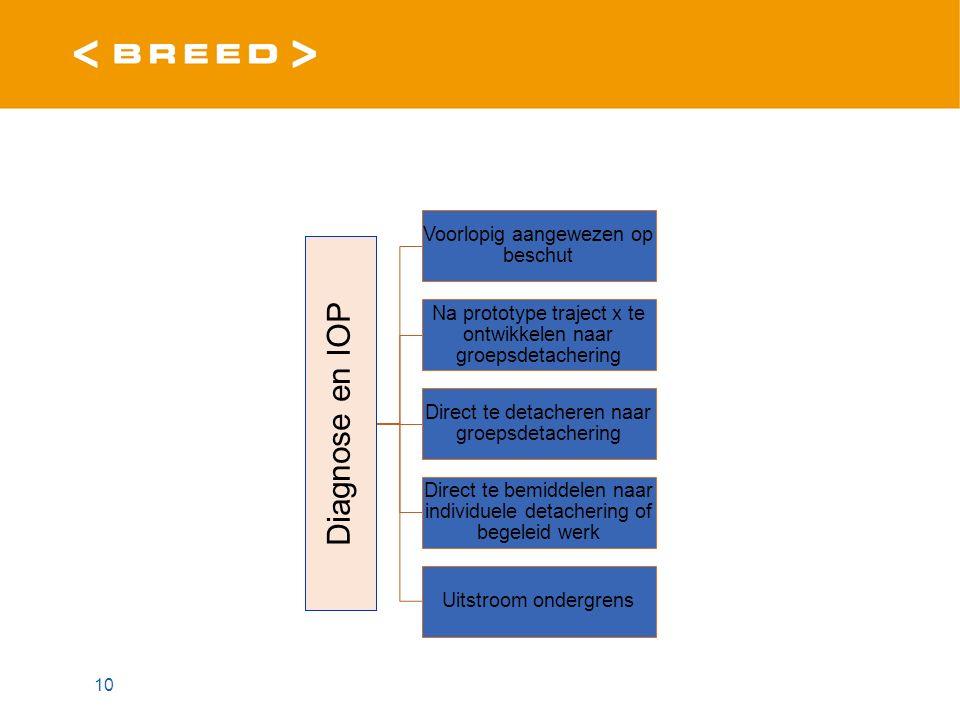 10 Diagnose en IOP Voorlopig aangewezen op beschut Na prototype traject x te ontwikkelen naar groepsdetachering Direct te detacheren naar groepsdetachering Direct te bemiddelen naar individuele detachering of begeleid werk Uitstroom ondergrens