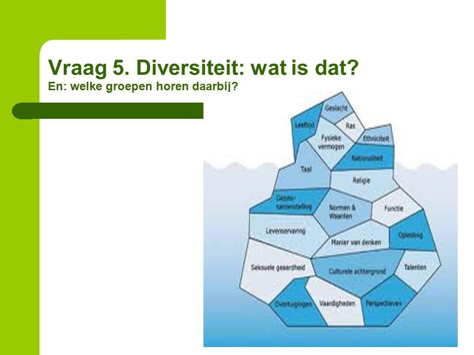 Vraag 5. Diversiteit: wat is dat? En: welke groepen horen daarbij?