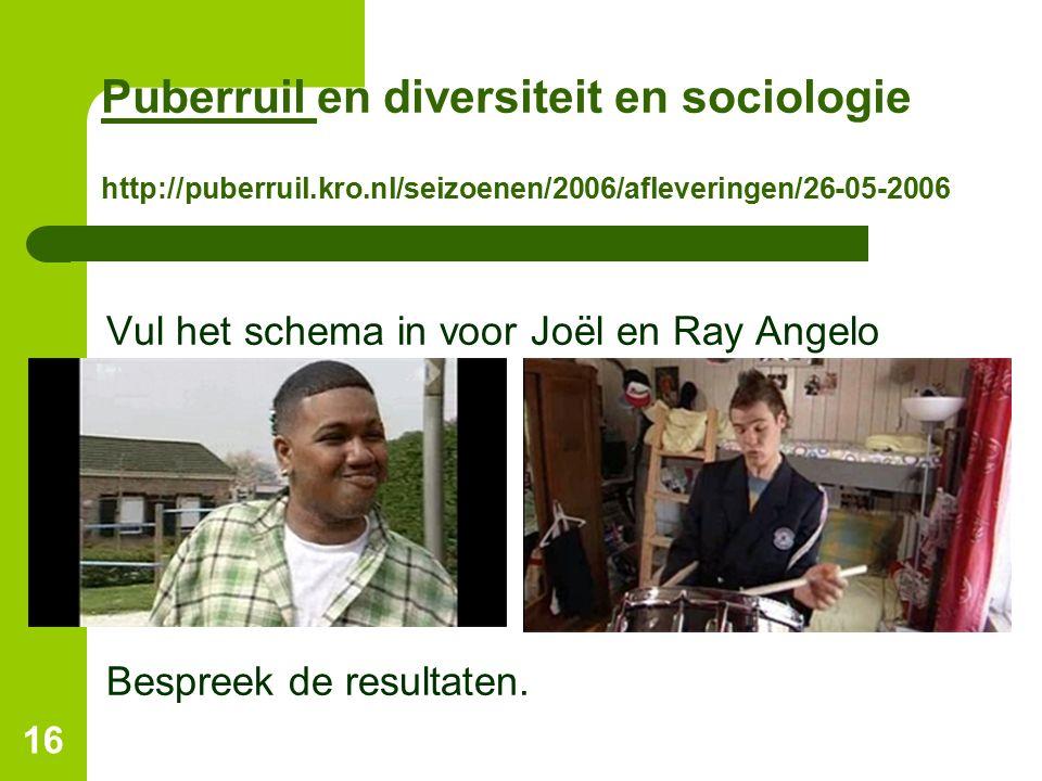 Puberruil Puberruil en diversiteit en sociologie http://puberruil.kro.nl/seizoenen/2006/afleveringen/26-05-2006 Vul het schema in voor Joël en Ray Ang