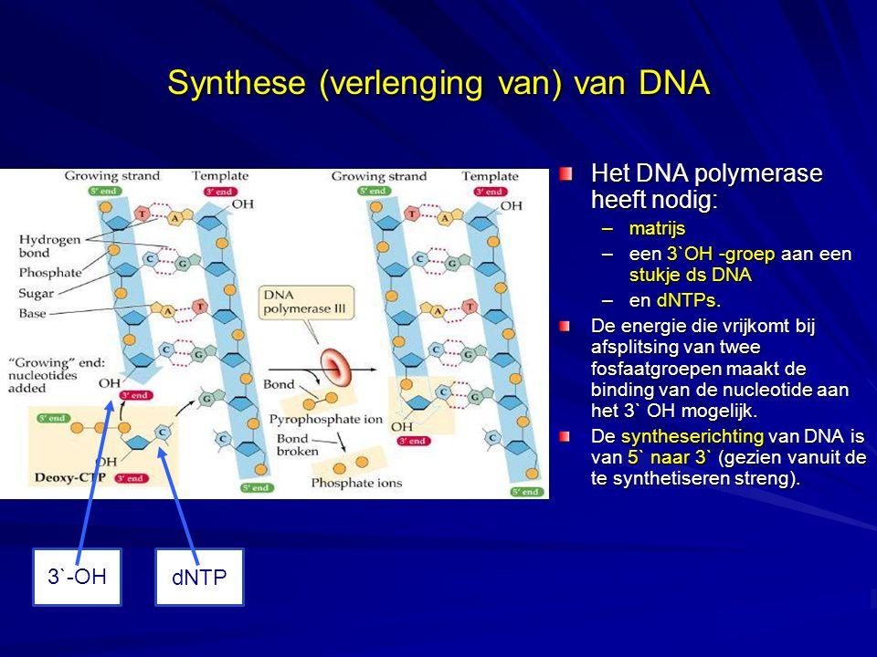 Synthese (verlenging van) van DNA Het DNA polymerase heeft nodig: –matrijs –een 3`OH -groep aan een stukje ds DNA –en dNTPs. De energie die vrijkomt b